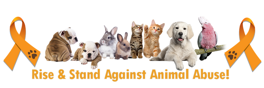 defining the issue animal cruelty The animals and society institute has a long history of facilitating research and  discussion about public policy issues related to animal protection.